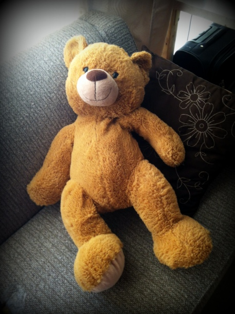 """""""Onze"""" beer lijkt erg op deze teddybeer."""